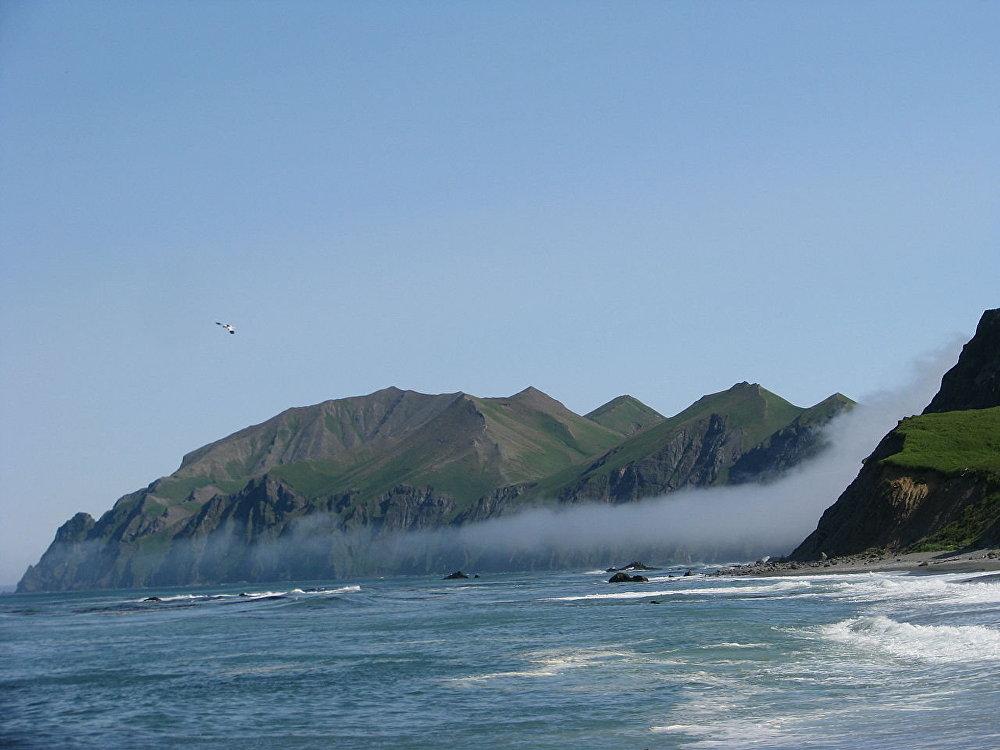 Mednıy Adası
