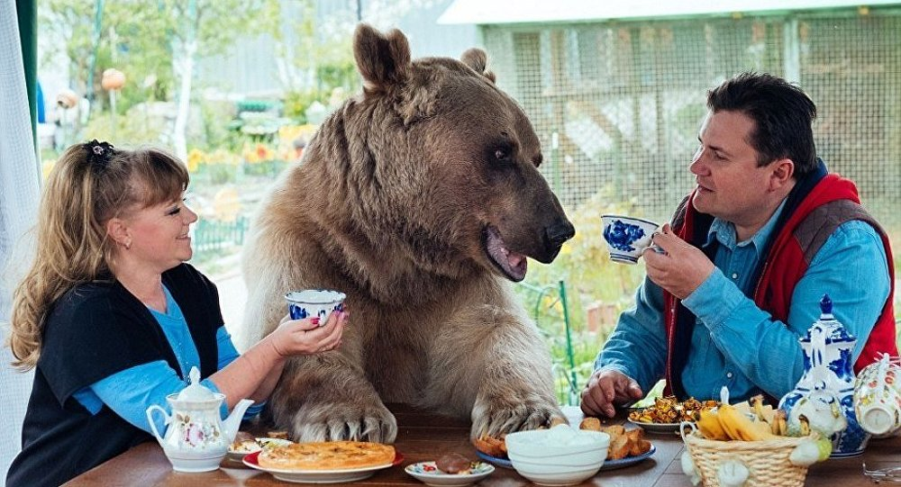 Rus aile bir ayıyla yaşıyor