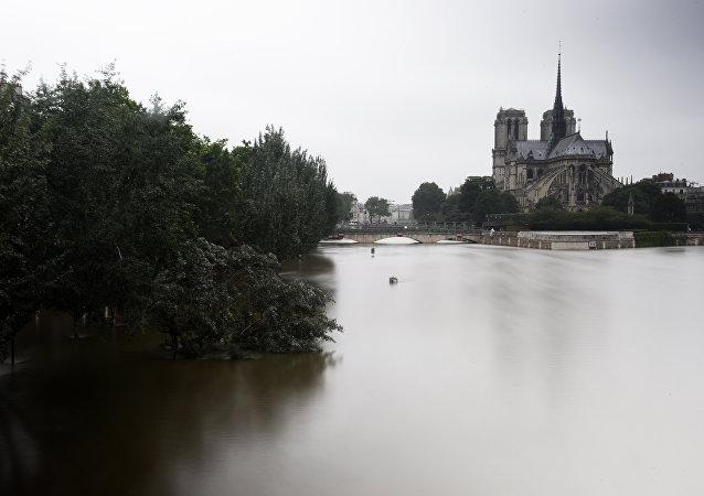 Seine Nehri