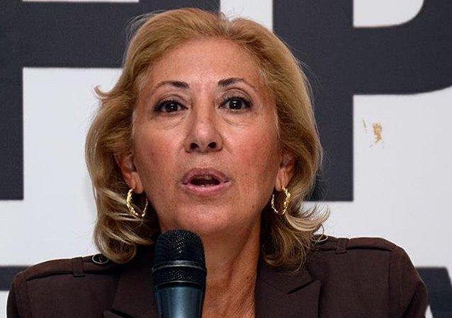 CHP Ankara Milletvekili Gülsün Bilgehan
