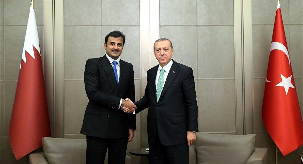Türkiye Cumhurbaşkanı Recep Tayyip Erdoğan- Katar Emiri Şeyh Temim bin Hamad El Sani