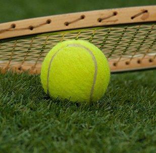 Tenis topu ve raketi