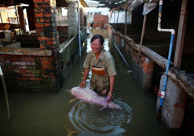 Çin'de meydana gelen sel ve toprak kaymaları sonucunda hayatını kaybedenlerin sayısı 114'e yükselirken, kaybolanların sayısı ise 111'e ulaştı.