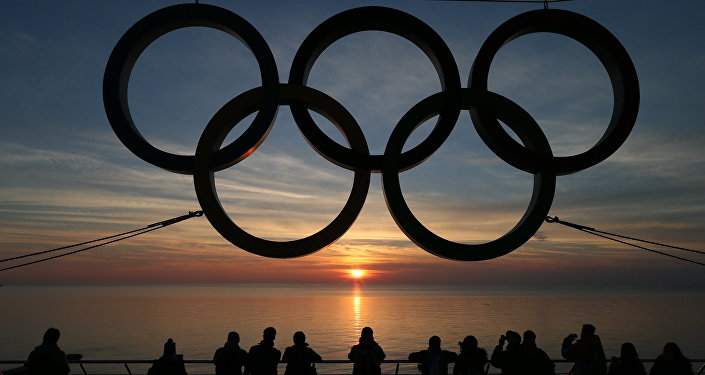 Soçi'nin Adler bölgesinde yer alan Olimpiyat halkaları.