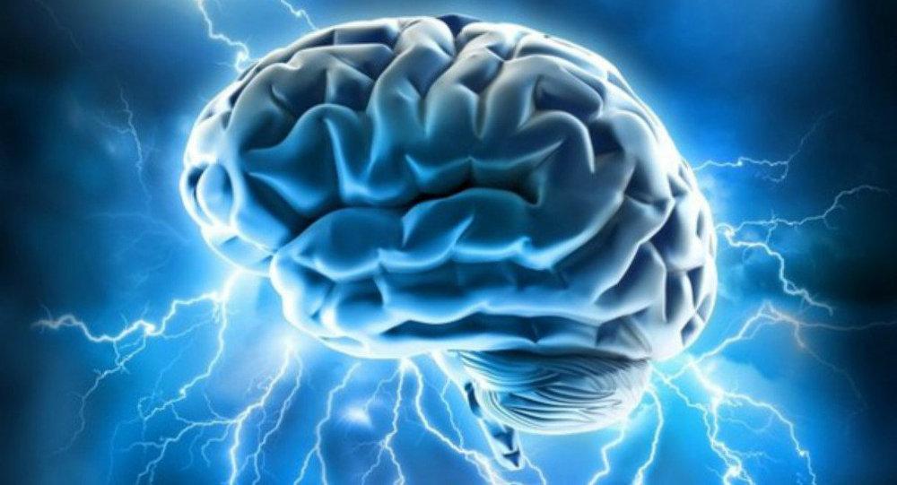 Beynin gençlikte en fazla değişime uğrayan bölgeleri belirlendi