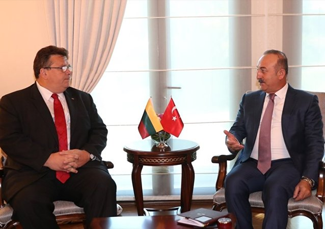 Dışişleri Bakanı Mevlüt Çavuşoğlu ve Litvanya Dışişleri Bakanı Linas Linkevicius