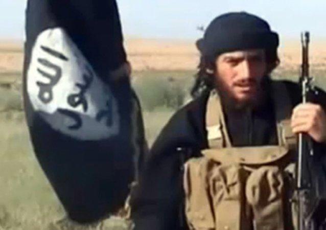 IŞİD'in iki numarası Adnani, Rusya'nın operasyonu ile öldürüldü