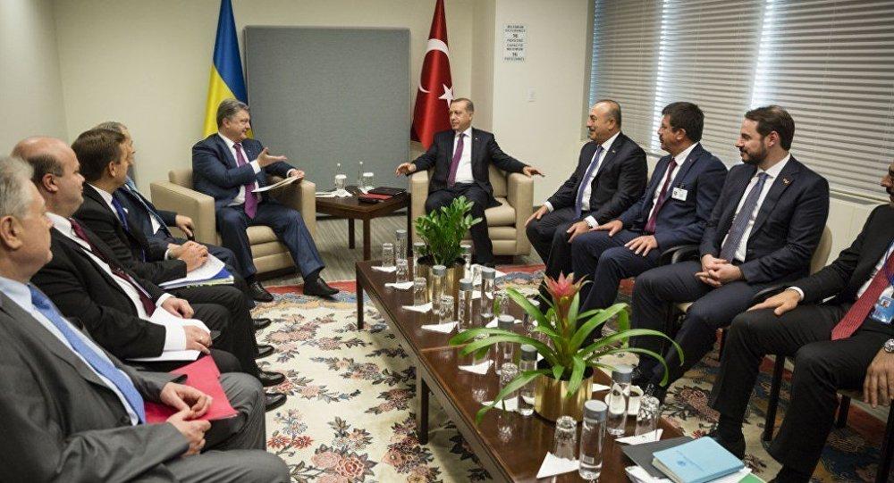Cumhurbaşkanı Recep Tayyip Erdoğan - Ukrayna Devlet Başkanı Petro Poroşenko