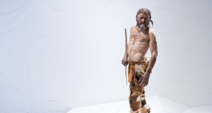 Oetzi isimli mumya