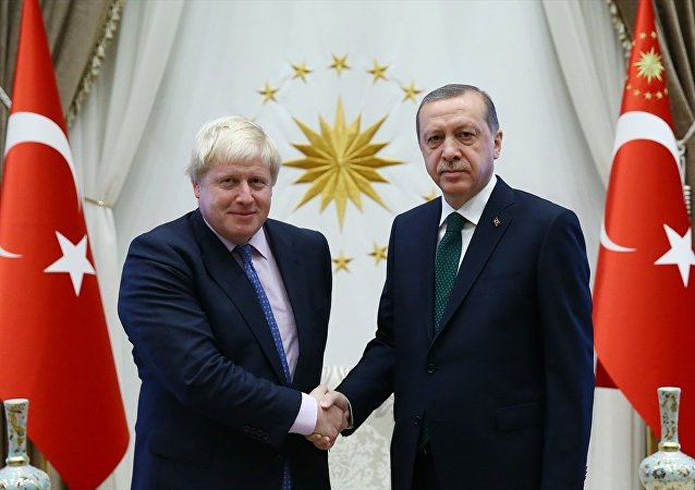Cumhurbaşkanı Recep Tayyip Erdoğan (sağda), İngiltere Dışişleri Bakanı Boris Johnson'ı (solda) kabul etti.