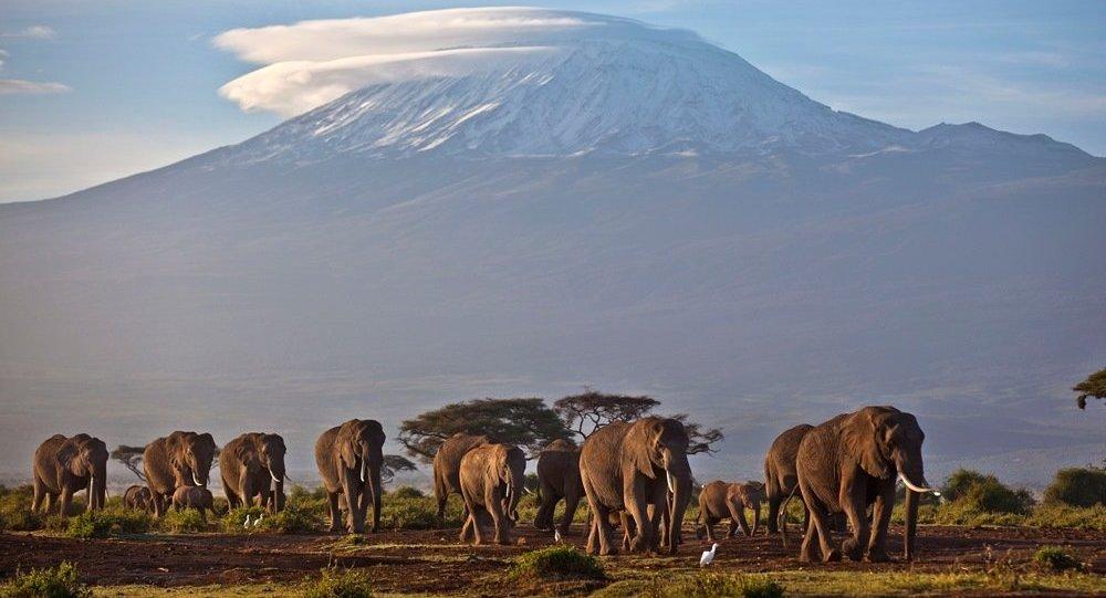 Afrika parçalanıyor: Dev çatlak Afrikayı ikiye bölecek