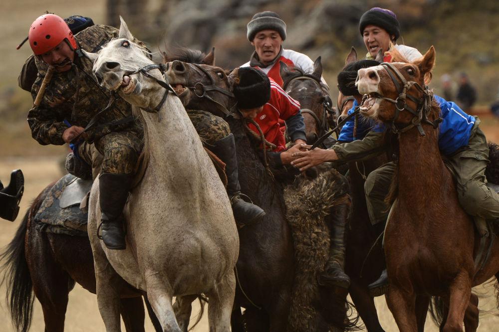 Kok-boru oyuna katılmak için güçe ve dayanıklılığa sahip olmak gerekir: Resmi yarışmalarda keçinin ağırlığı 32-35 kilodur.