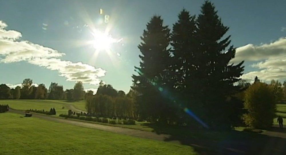 İsveç-doğal mezar
