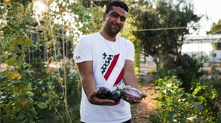 Midilli'deki sığınmacılar, ada halkına teşekkür etmek için sebze yetiştiriyor