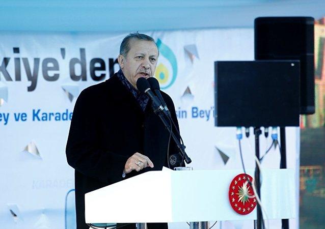 Cumhurbaşkanı Recep Tayyip Erdoğan, Tuzla'daki enerji üretebilen gemilerin uğurlandığı törende konuştu