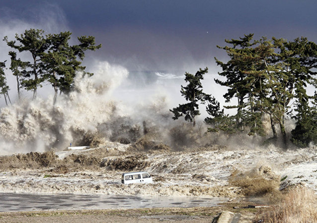 Tsunami (Arşiv)