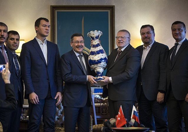 Rusya Federasyonu Liberal Demokrat Parti Başkanı Vladimir Jirinovski, Ankara'ya geldi