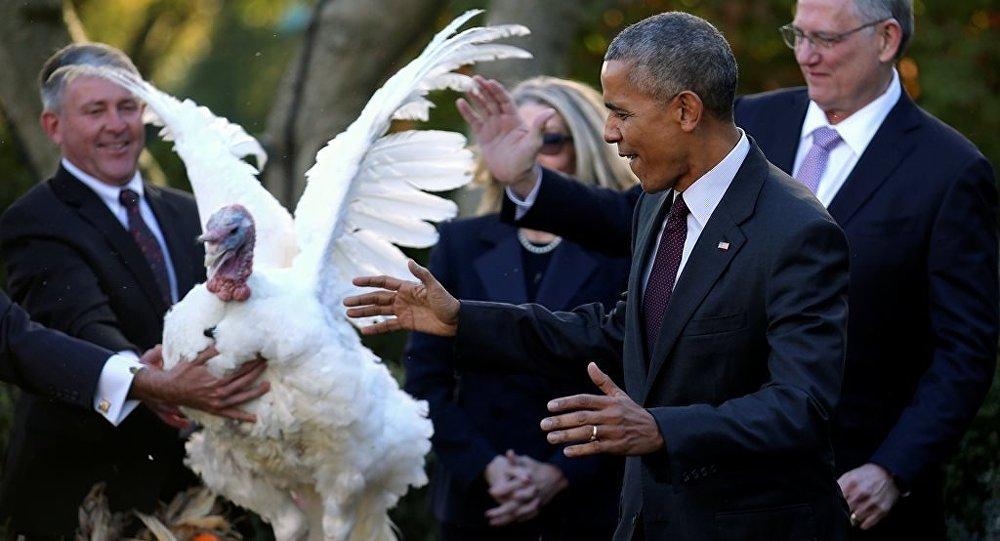 Barack Obama, Şükran Günü