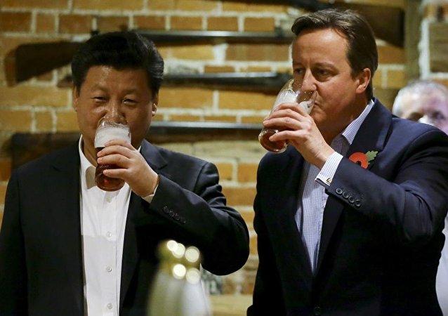 David Cameron - Şi Cinping