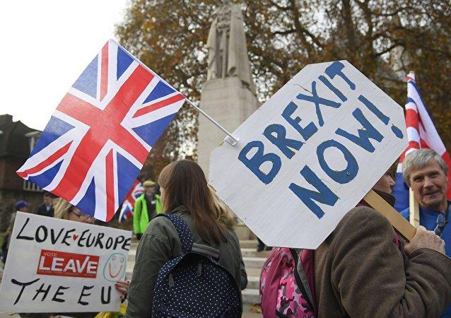 Parlamento önündeki Brexit destekçileri