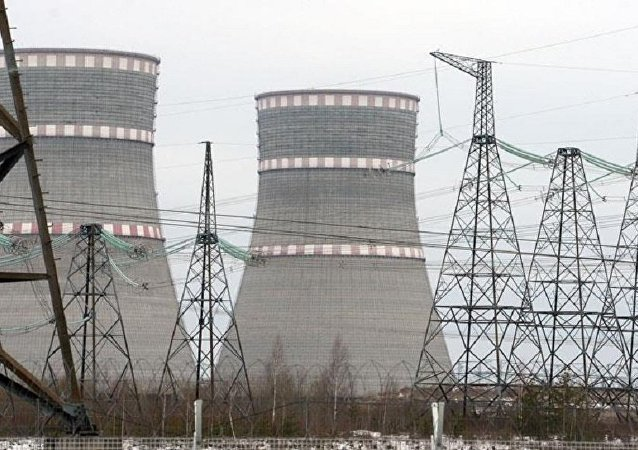 Japonya'nın Fukui kentindeki Monju nükleer santrali