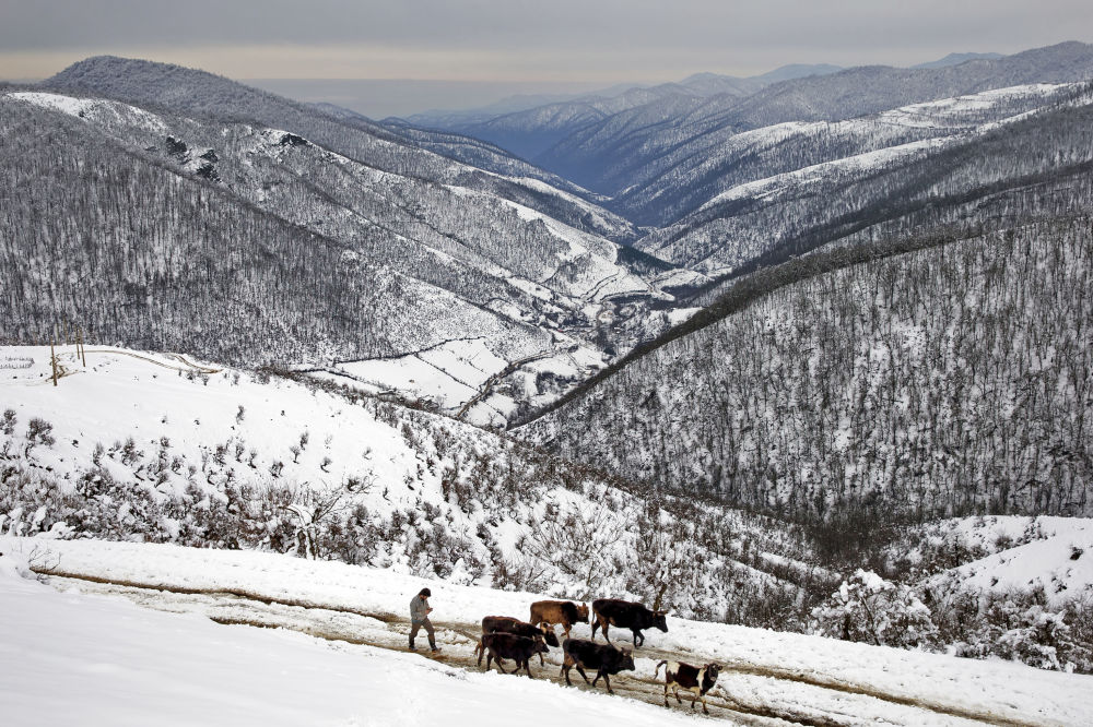 Beyazlara bürünen Talış Dağları