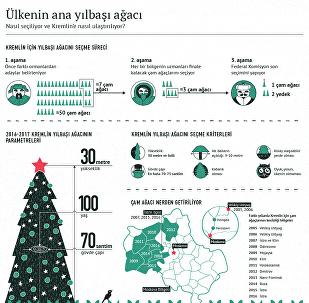Rusyanın ana yılbaşı ağacı