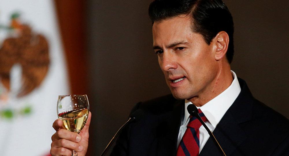 Meksika Devlet Başkanı Enrique Pena Nieto
