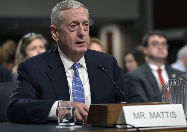 ABD Savunma Bakanı Adayı emekli General James Mattis
