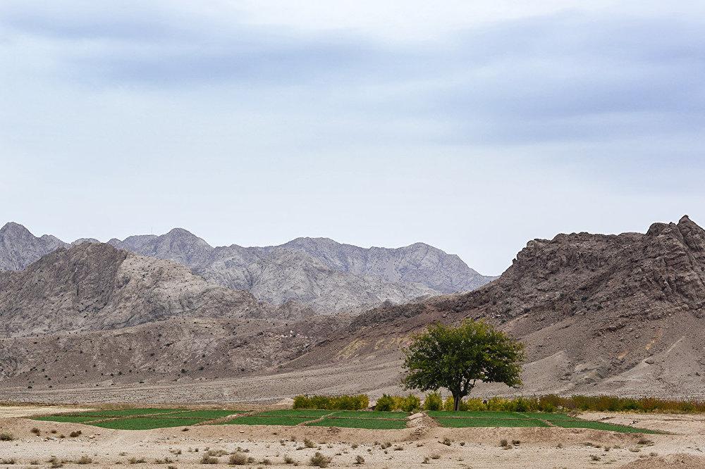 Kentin etrafı kumdan arazilerle dolu olsa da, verimli bazı arazilerde buğday ve arpa yetiştiriliyor.