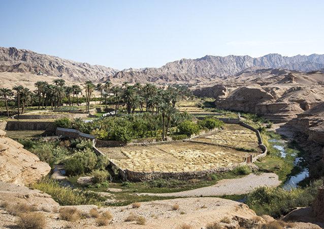 Tebes'te bulunan su kaynakları ve dereler, pirinç yetiştiriciliğine de olanak veriyor.