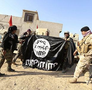 Irak ordusu - IŞİD
