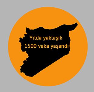 2016 yılında Suriye'de insan ticareti