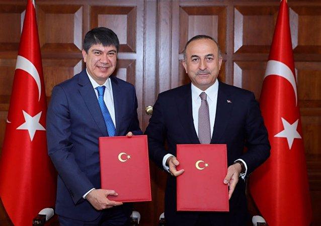 Mevlüt Çavuşoğlu ve Menderes Türel