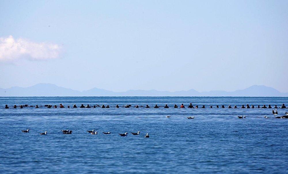Yeni Zelanda kıyıya vuran balinalar