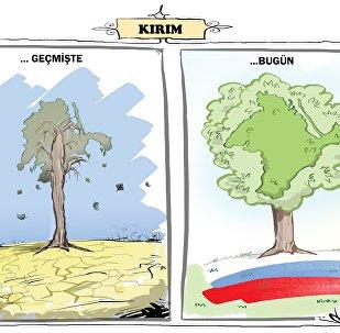 Kırım'ın bütçe geliri eskisine göre iki kat arttı.