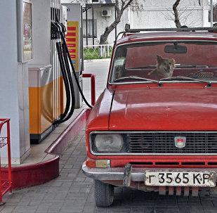 Sovyet otomobili Moskviç