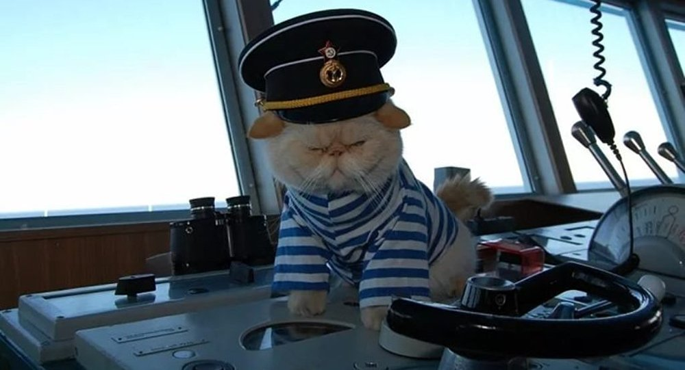 Rus yolcu gemisinin kedi çalışanları