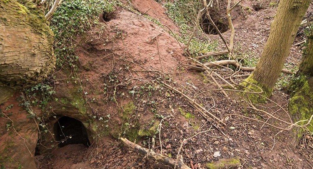 İngiltere'de tavşan deliğinden yeraltı tapınağı çıktı