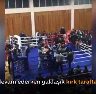 Dağıstan'da dövüş maçında taraftarlar kavga çıkardı