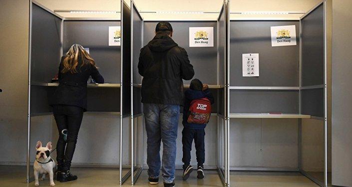 Hollanda'da oy sandıkları