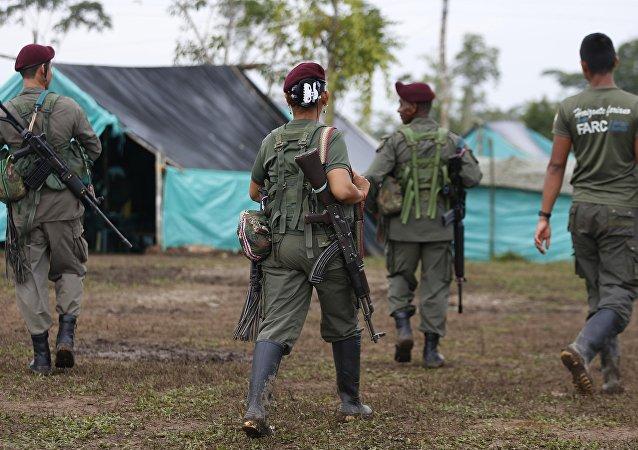 FARC silah bırakmaya başladı