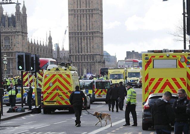 Londra saldırısının ardından polis olay yerinde