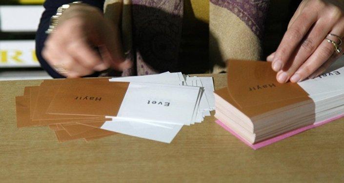 Gümrük kapılarında oy verme işlemi - Referandum