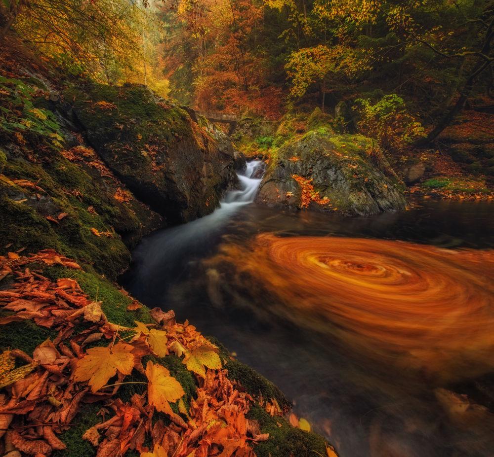 Bulgar fotoğrafçı Ivan Miladinov'un 'Old River' adlı çalışması