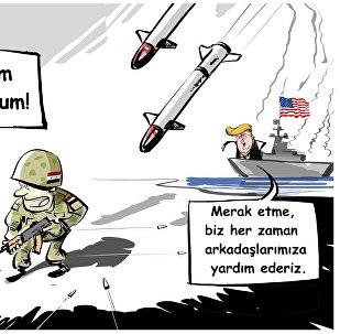 'ABD'nin Suriye'yi vurması 'de-facto olarak' teröristlerin çıkarlarına hizmet ediyor'
