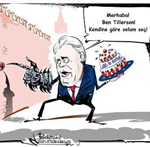 Tillerson, Rusya'dan ABD ve Esad arasında seçim yapmasını istedi