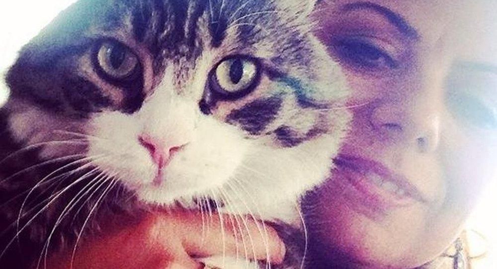 CHP'nin kedisi Şero