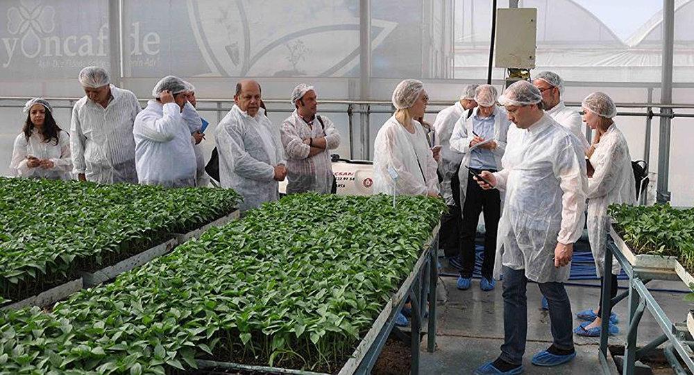 Rus tarım heyeti Mersin'de