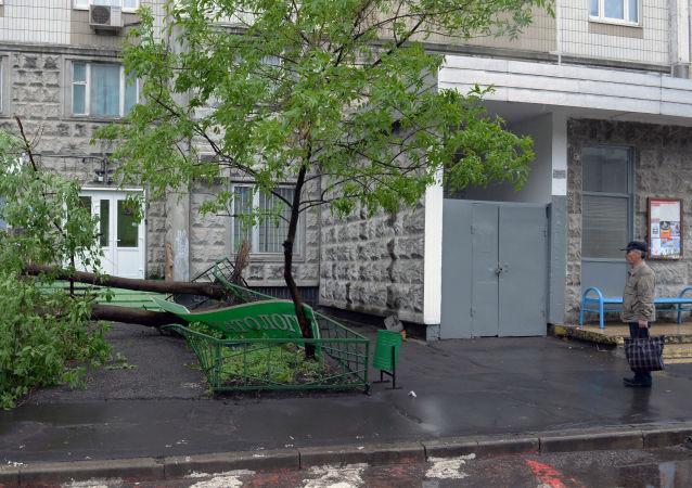 Moskova'da kasırga